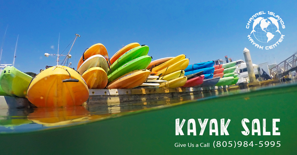 kayak sale